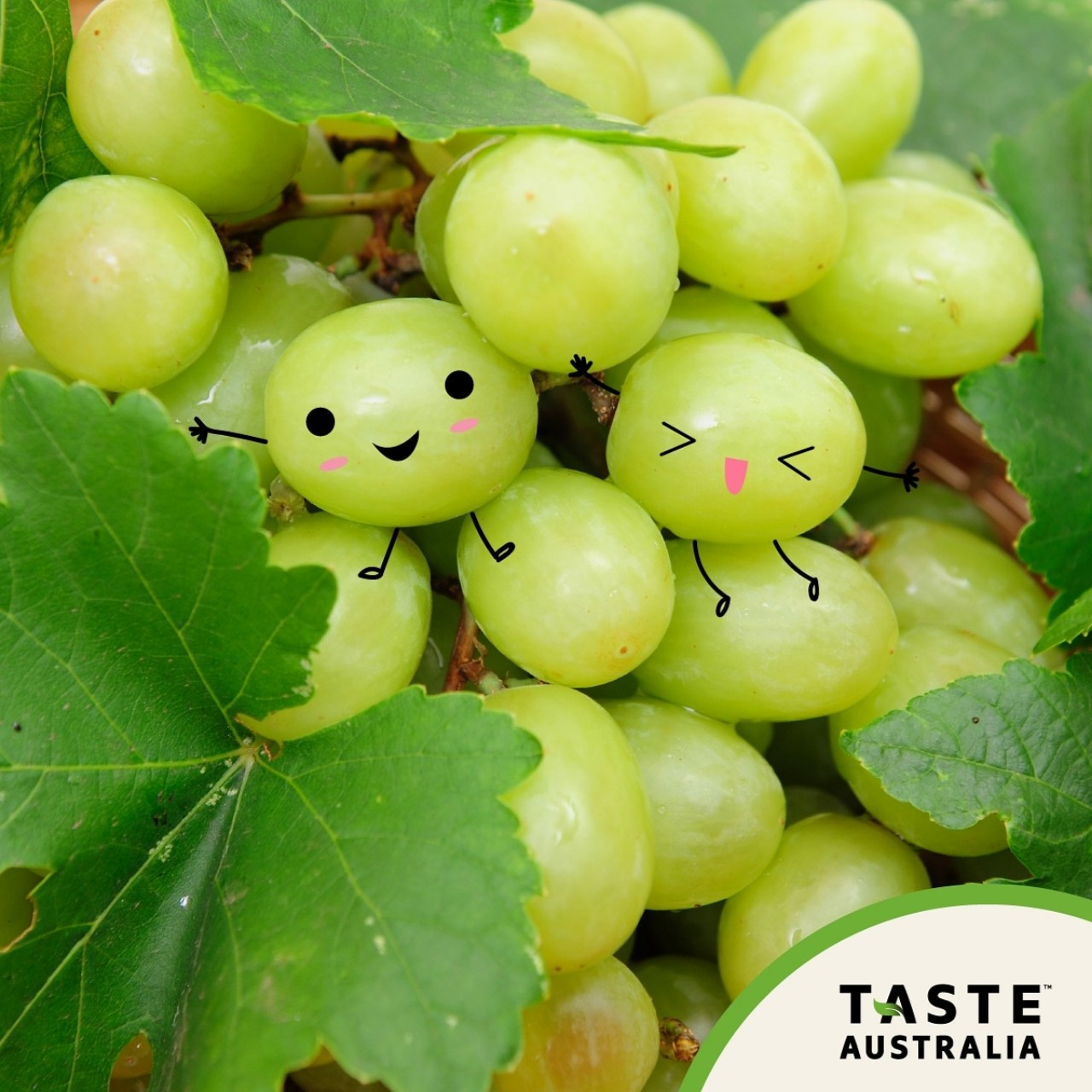 Have A Sweet Day With Australian Grapes!